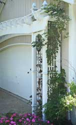 Detail of Garage Arbor